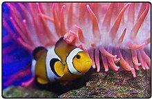 MALPLENA Malpela Fußmatte Clownfisch und Koralle