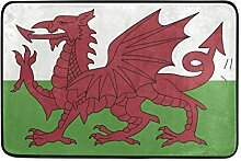 MALPLENA Wales Flagge Bodenmatten Schuhe Schaber
