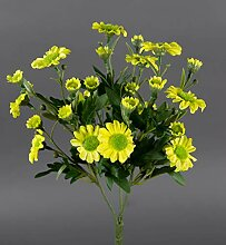 Margeritenbusch 30cm gelb -ohne Topf- ZF