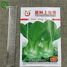 Marke Samen Chinakohl Samen essbar Gemüse Hausgarten Pflanze BB021