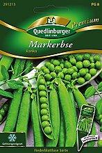 Markerbsen Ranka von Quedlinburger Saatgu