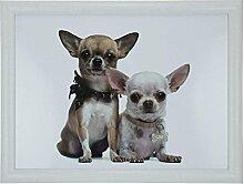 Mars & More Knietablett mit 2 Chihuahuas 43x33x7 cm