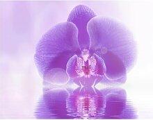 Matt Fototapete Lila Orchidee auf Wasser 1,9 m x