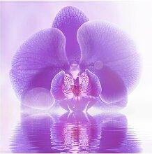 Matt Fototapete Lila Orchidee auf Wasser 1,92 m x