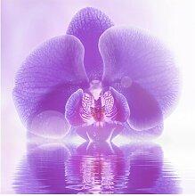 Matt Fototapete Lila Orchidee auf Wasser 2,88 m x