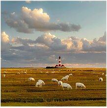 Matt Fototapete Nordsee Leuchtturm mit Schafsherde