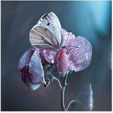 Matt Fototapete Schmetterling im Regen 3,36 m x