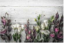 Matt Fototapete Tulpen-Rose Shabby Holzoptik 2,55