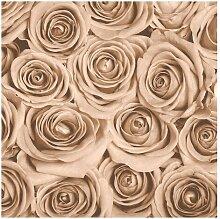Matt Fototapete Vintage Rosen 2,4 m x 240 cm East