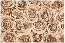 Matt Fototapete Vintage Rosen 2,55 m x 384 cm
