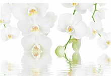 Matt Fototapete Wellness Orchidee - Weiße
