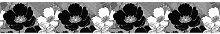 Matte Tapete Schwarze Blumen 5 m x 14 cm 17 Stories