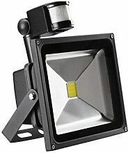 MCTECH 50W LED Fluter Kaitweiß Strahler LED Fluter Scheinwerfer mit Bewegungsmelder Aluminiumgehäuse Schwarz Wasserdicht IP65