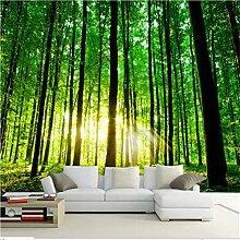 Mddjj Natur Landschaft 3D Wandbild Fototapete Für