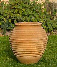 mediterrane terracotta Amphore, 70 cm frostfest Keramik für den Garten, Außenbereich Terrasse, hochwertig Ficus
