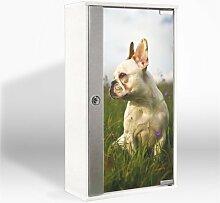 Medizinschrank mit Glastür und Motiv: Französische Bulldogge