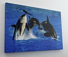 Meer Ozean Orca Wal Leinwand Canvas Bild Wandbild