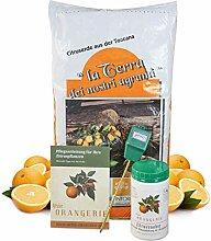 Meine Orangerie Zitrus-Pflegepaket Mezzo: Beste