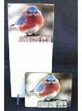 Memo Pad, Mad Bluebird