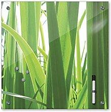 Memoboard 40 x 40 cm, Pflanzen - Gras - Glasboard