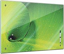 Memoboard 60 x 40 cm, Pflanzen - Bananenblatt -