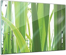 Memoboard 60 x 40 cm, Pflanzen - Gras - Glasboard