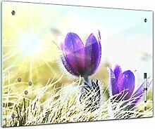 Memoboard 60 x 40 cm, Pflanzen - lila Feldblumen -