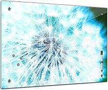 Memoboard 60 x 40 cm, Pflanzen - Pusteblume -