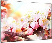 Memoboard 80 x 60 cm, Pflanzen - Apfelblüten -