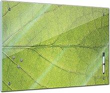 Memoboard 80 x 60 cm, Pflanzen - Blatt - Glasboard