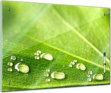 Memoboard 80 x 60 cm, Pflanzen - Blatt und Wasser