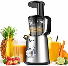 Menton Ezil Entsafter Slow Juicer Multifunktion
