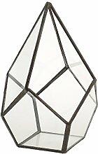 MERIGLARE Glas Terrarium Würfel Fee Gartenhaus