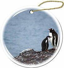 Mesllings Pinguine stehend auf Rocky Mountain