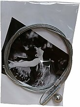 Metall Magnet Fotodraht, 190 x 1,2 mm Fotoleine