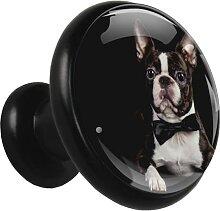 Metall Schubladenknopf Bulldog negro Möbelgriff