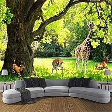 MGMMural 3D-Fototapete Wandbild Boy Grün Wald