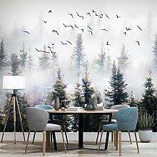 MGMMural 3D-Fototapete Wandbild Boy Natur Nebel
