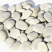 MGS SHOP Flachkies MEDITERRAN Flat-Stone Flacher Kies sehr angenehm begehbar 20 kg (cremeweiß, 2-3cm)