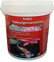 MIBO Fadenalgenvernichter 1000 g für 30.000 Liter