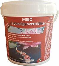 MIBO Fadenalgenvernichter 1000 g für 30.000 Liter Teichwasser Fadenalgen Stopp