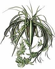 Mica decorations 918252-T Kunstblume -und Pflanze, Chlorophytum grünlilie Höhe 45 cm, Durchmesser 45 cm grün im Übertopf Stan D11.5 Terrakotta grau/braun