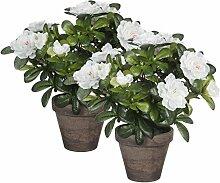 Mica decorations 950330-T Kunstblume -und Pflanze, 2 Stück Azalee Höhe 27 cm weiß im Übertopf Stan, grau / braun