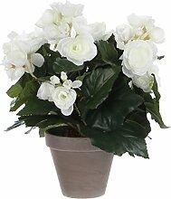 Mica decorations 977508-T Kunstblume -und Pflanze, Begonie Höhe 30 cm, Durchmesser 25 cm weiß im Übertopf Stan D11.5, grau / braun