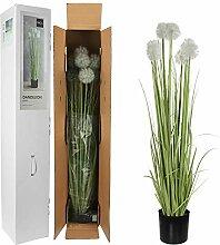 MICA Decorations Dandelion im Plastic Topf,