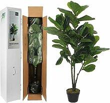 MICA Decorations Ficus Lyrata im Plastic Topf,