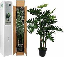 MICA Decorations Philodendron im Plastic Topf,