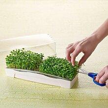 MicroGreen Duo-Garden Anzucht-Set mit 2 Pads & 1