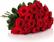 MIFLORA Blumenstrauß 20 Rote Rosen mit XXL-Blütenköpfen   Gratis Grußkarte inklusive