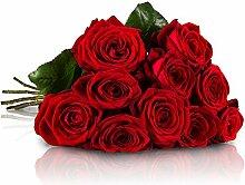 MIFLORA Blumenstrauß mit 10 Red Naomi Rosen mit